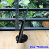 Màn hình Acer 20 inch S201HL man hinh cu gia re tphcm 3