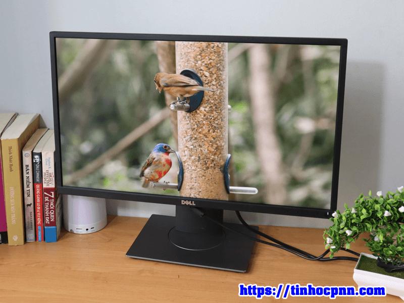 Màn hình Dell UltraSharp P2417H HDMI man hinh cu gia re tphcm6